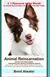 "Animal Reincarnation: Everything You Always Wanted to Know! about Pet Reincarnation Plus ""How To"" Techniques to See, Feel & Communicate with"