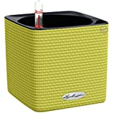 Lechuza Cube Color-14 Flower Pot With Filling Stones (500 G, Lime Green)