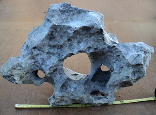 Big Texas Holey Rock For Fish Tanks And Aquariums Honeycomb Cichlids Decor