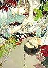爪先に光路図 (ミリオンコミックス  Hertz Series 122)