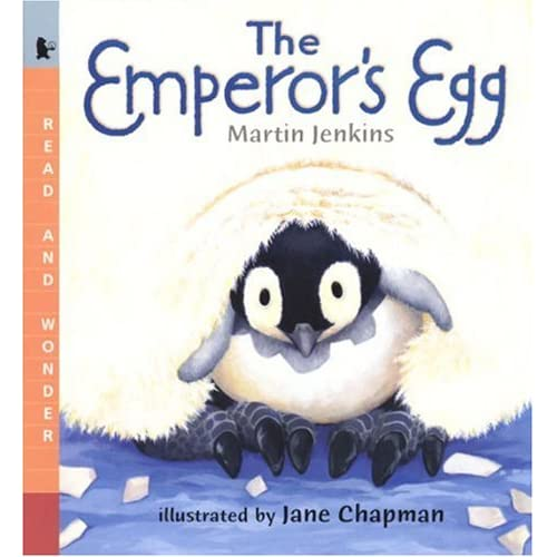The Emperor's Egg Big Book: Read and Wonder Big Book Martin Jenkins and Jane Chapman