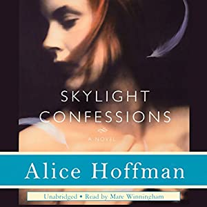Skylight Confessions Audiobook