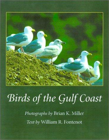 Birds of the Gulf Coast
