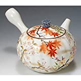 京焼・清水焼 磁器急須彩花鳥 紙箱入 Kiyomizu-kyo yaki ware. Japanese Kyusu teapot irodori kacho with paper box. Porcelain.