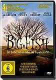DVD Cover 'Big Fish