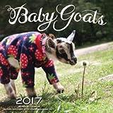 img - for Baby Goats 2017: 16-Month Calendar September 2016 through December 2017 book / textbook / text book