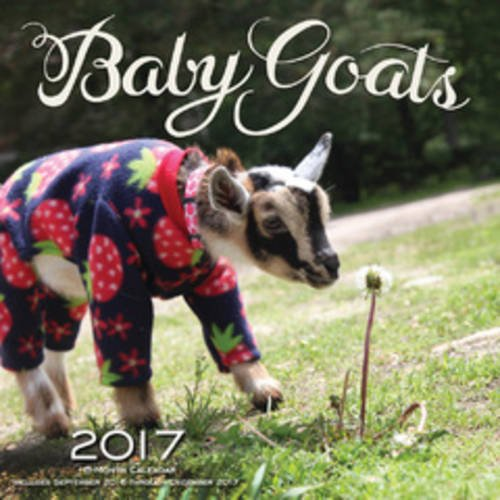 Baby Goats 2017: 16-Month Calendar September 2016 through December 2017
