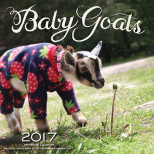Baby Goats 2017: 16-Month Calendar September 2016 through December 2017