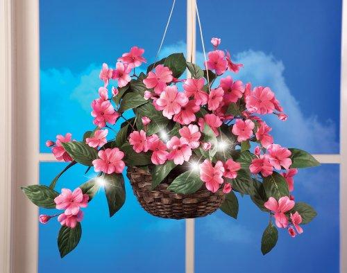 Led Hanging Flower Baskets : Impatiens