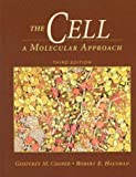 The cell :  a molecular approach /