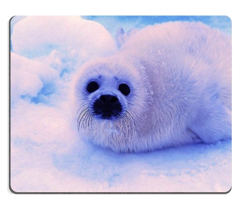 Animal Wildlife Seal Snow Cute White Furry Baby Mouse Pads Customized Made To Order Support Ready 9 7/8 Inch (250Mm) X 7 7/8 Inch (200Mm) X 1/16 Inch (2Mm) High Quality Eco Friendly Cloth With Neoprene Rubber Luxlady Mouse Pad Desktop Mousepad Laptop Mous front-1020281