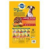 PEDIGREE-Large-Breed-Adult-Dry-Dog-Food