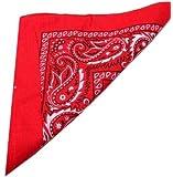 Red Paisley Bandana (Centre Patterned)