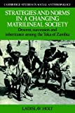 img - for Strategies and Norms in a Changing Matrilineal Society: Descent, Succession and Inheritance among the Toka of Zambia (Cambridge Studies in Social and Cultural Anthropology) book / textbook / text book