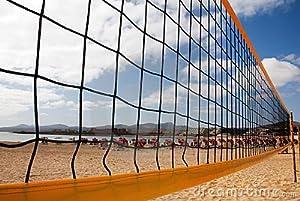 Buy Volleyball Net: Beach 32' Net by Net World
