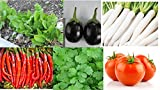 Go Green Main Running Vegetables Suitable For Throught Year Gardening - Spinach, Coriander, Radish, Brinjal, Chilli And Tomato -Hybrid Packs