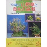 img - for Also grass and bonsai and mountains grass of Okinawa (2003) ISBN: 4890951407 [Japanese Import] book / textbook / text book