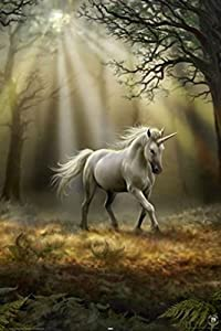 "1art1 54665 Poster ""Anne Stokes Gothic Unicorn in Misty Forest Clearing"" 91 x 61 cm"