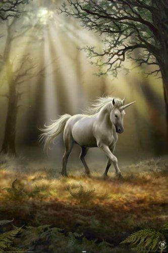 Barlume di un unicorno by Anne Stokes Poster con stampa artistica