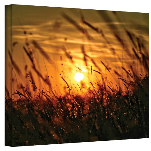 Art Wall An Evening with The Quiet Voice Wrapped Canvas Art by Mark Ross, 18 by 24-Inch