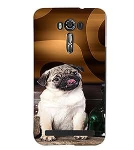 PRINTVISA Dog Pug Case Cover for Asus Zenfone 2 Laser ZE500KL::Asus Zenfone 2 Laser ZE500KL (5 Inches)