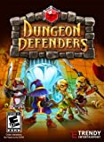 Dungeon Defenders - 2 Pack [Download]