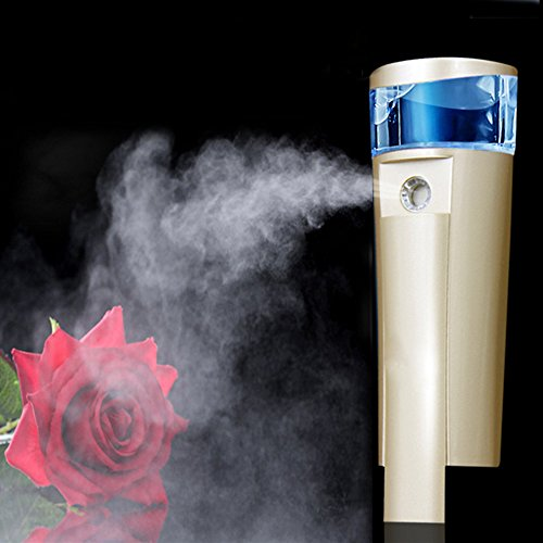 Mermaid 2 IN 1 Facial Skincare Sprayer and USB Rechargeable Mini Handheld Atomizer Face Moisturizing Machine Portable Spray Mist Facing Humectant Steamer Humidfier-Best Dry Oil Skin Treatment (GOLD) (Radiator Slip Cover compare prices)