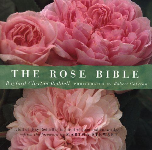 The Rose Bible (Clayton Rose compare prices)