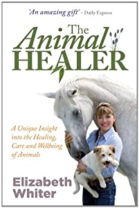 The Animal Healer by Hay House