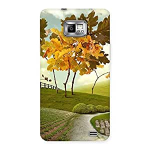 Ajay Enterprises Painted Beautifull Way Back Case Cover for Galaxy S2