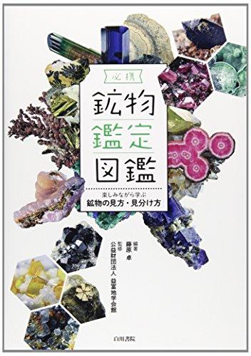 必携 鉱物鑑定図鑑―楽しみながら学ぶ鉱物の見方・見分け方