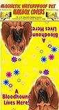 Bloodhound 18