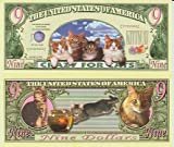 Cat and Kitten Novelty Money Collectible Bill!