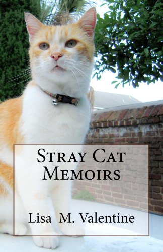Free Kindle Book : Stray Cat Memoirs