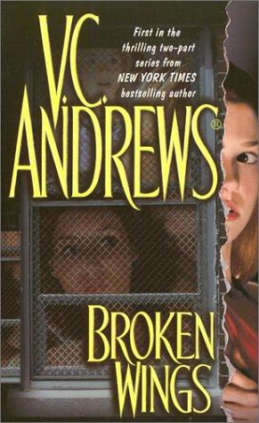 Image for Broken Wings (Broken Wings)