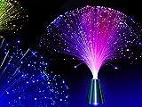 E&A Colourful Changing Fibre Fiber Optic Fountain Night light Calming Lamp Christmas Gift