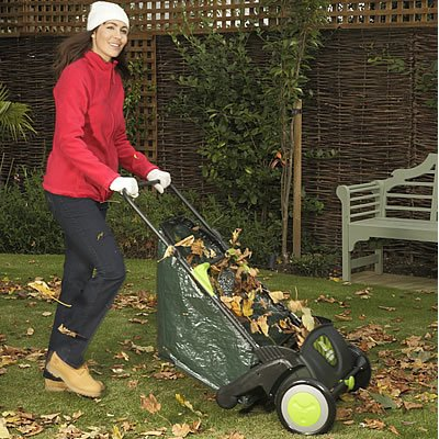 leaf-sweeper-lawn-grass-paths-picks-up-dead-cuttings-easy-to-use