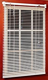 Magne 40-Inch Vinyl Mini Blind with 1-Inch Slats and 25-Inch Width 40-Inch Drop __#G451YH4 51IO3446889