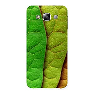 Enticing Leaf Pattern Multicolor Back Case Cover for Samsung Galaxy E5