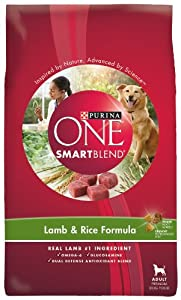 Purina One Lamb & Rice Dog Food, 4-Pound Bags (Pack of 6)