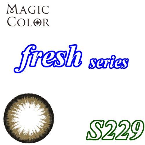 MAGICCOLOR (マジックカラー) fresh S229 度なし 14.0mm 1ヵ月使用 2枚入り