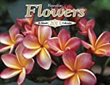 Hawaiian 16 Month Value Calendar 2013 Island Flowers