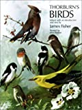 img - for Thorburn's Birds book / textbook / text book