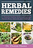 img - for Herbal Remedies: 31 Powerful Healing Herbs that Cure and Prevent Illness Naturally and Holistically (Natural Remedies - Your Complete Bible of Herbal Healing - Herbal Medicine) book / textbook / text book