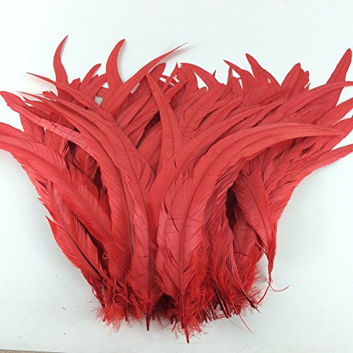 sowder-red-rooster-coque-tail-feathers-12-15inch-lengh-pack-of-50