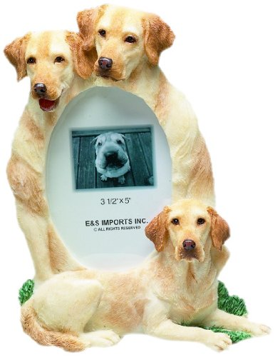 E&S Pets 35257-56 Large Dog Frames