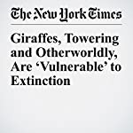 Giraffes, Towering and Otherworldly, Are 'Vulnerable' to Extinction | Patrick Healy