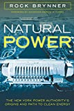 Natural Power: The New York Power Authority