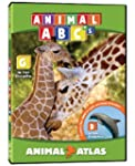 Animal Atlas: ABC's
