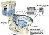 American-Standard-H2Option-Siphonic-Dual-Flush-Toilet